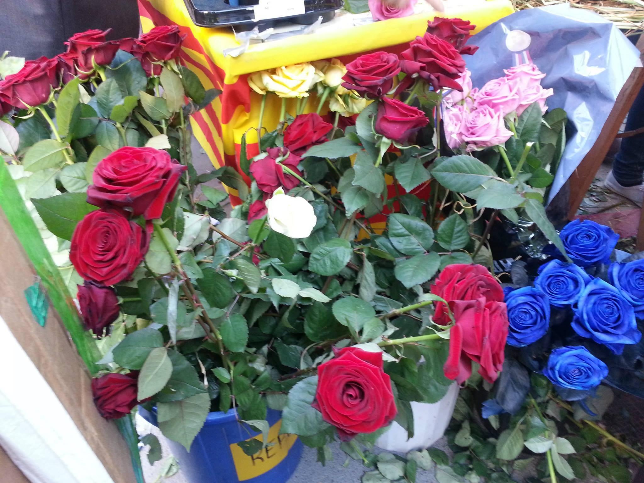 Rosas en Sant Jordi en Barcelona