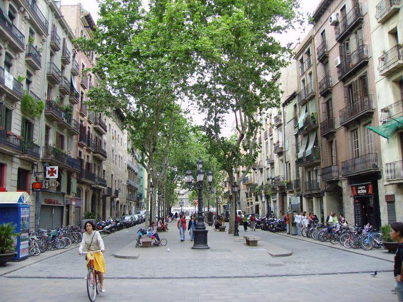 planes domingo barcelona